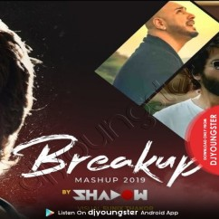Breakup Mashup 2019 song download by DJ Shadow Dubai
