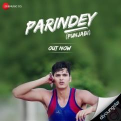 Parindey song download by Nitin Gupta