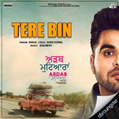 Tere Bin song download by Ninja