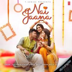 Nai Jaana song download by Tulsi Kumar