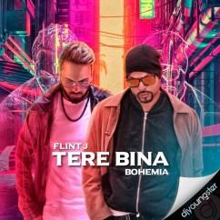 Tere Bina song download by Flint J
