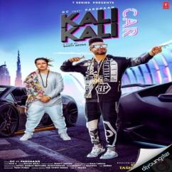 Kali Kali Car song download by Pardhaan