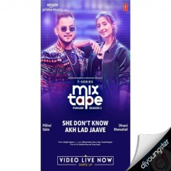 She Dont Know song download by Millind Gaba