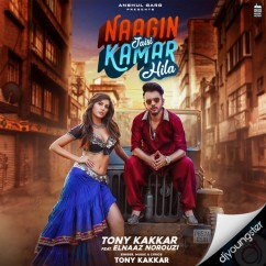 Naagin Jaisi Kamar Hila song download by Tony Kakkar