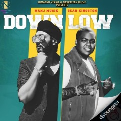 Down Low song download by Manj Musik