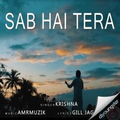 Sab Hai Tera song download by Krishna