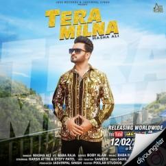 Tera Milna song download by Masha Ali