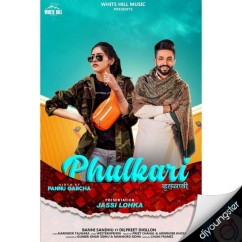 Phulkari ft Dilpreet Dhillon song download by Baani Sandhu