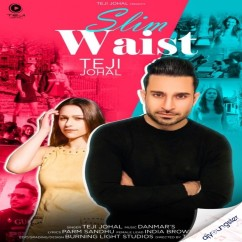 Slim Waist song download by Teji Johal