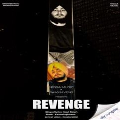 Revenge song download by Navi Singh