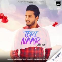 Teri Naar song download by Jass Kay