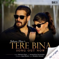 Tere Bina song download by Salman Khan