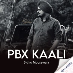 PBX Kaali song download by Sidhu Moosewala