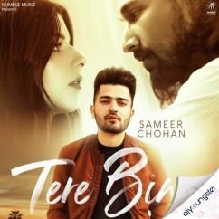 Tere Bina song download by Sameer Chohan