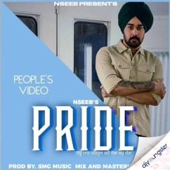 Pride song download by Nseeb