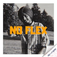 No Flex song download by King Dhillon