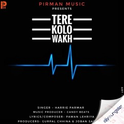Tere Kolo Wakh song download by Harrie Parmar