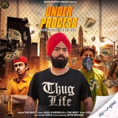 Under Process song download by The Meet