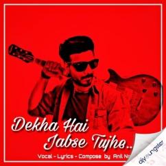 Dekha Hai Jabse Tujhe song download by Anil Nayak