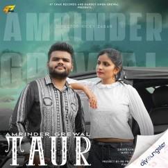 Taur song download by Amrinder Grewal