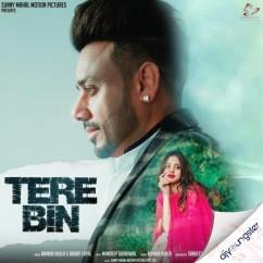 Tere Bin song download by Bhinda Aujla