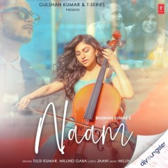 Naam ft Millind Gaba song download by Tulsi Kumar