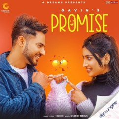Promise song download by Gavin