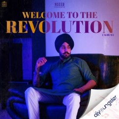 Welcome To The Revolution song download by Nseeb