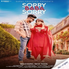 Sorry Baba Sorry song download by Meetii Kalher