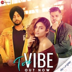 Teri Vibe song download by Manveer Singh