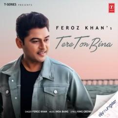 Tere Ton Bina song download by Feroz Khan