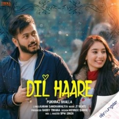 Dil Haare song download by Pukhraj Bhalla