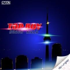 Top Boy song download by Roach Killa