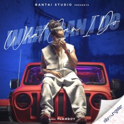 What Can I Do song download by Emiway Bantai