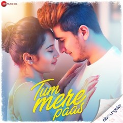 Tum Mere Paas song download by Mohammed Irfan