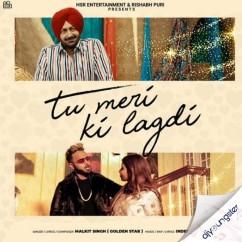 Tu Meri Ki Lagdi ft Malkit Singh song download by Kanika Kapoor
