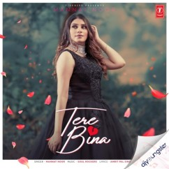 Tere Bina song download by Mannat Noor