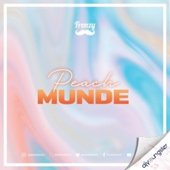 Peach Munde (Remix) song download by Dj Frenzy