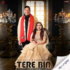Tere Bin song download by Veet Baljit