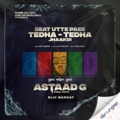 Seat Utte Paee Tedha Tedha Jhakdi song download by Elly Mangat