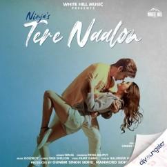 Tere Naalon x Payal Rajput song download by Ninja